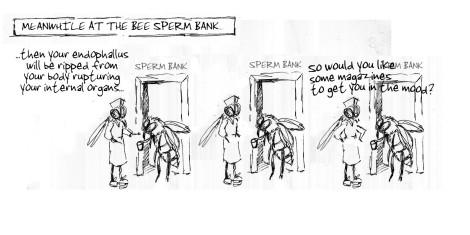 BEE SPERM BANKS